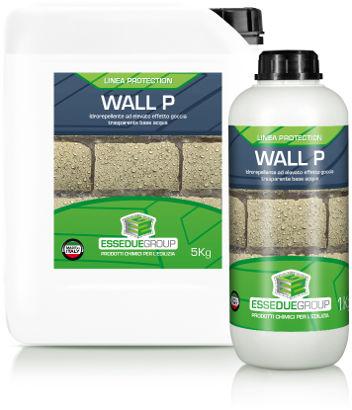 Wall P
